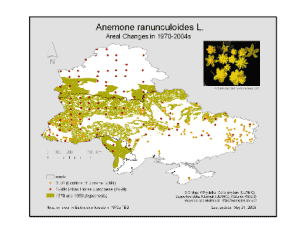 Yellow Anemone (A.ranunculoides): areal changes in 1970-2008