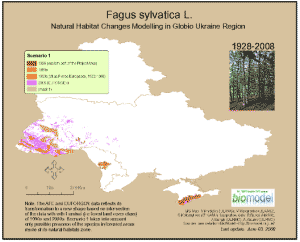 Beech (Fagus sylvatica):natural habitats location modelling (1928-2008)