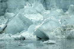 Future predictions using MICOM model: Global Climate Change may turn Arctic Ocean into stagnant, polluted soup by 2070