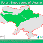 Forest-steppe_ua