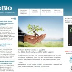 Website GLOBIO model fully renewed